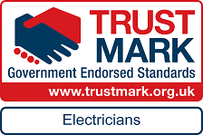 government endorsed electrician